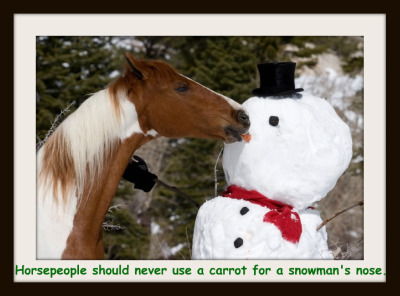 carrot-in-snowmans-nose